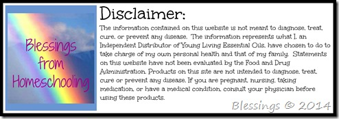 YL Disclaimer